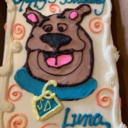 Scooby Doo Custom Cake